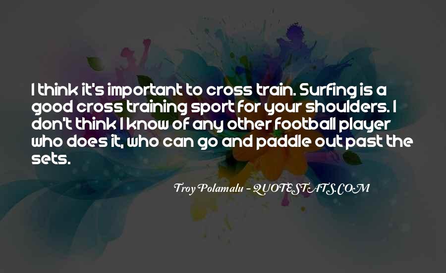 Troy Polamalu Quotes #1311865