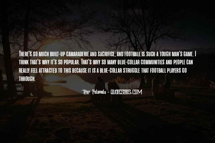 Troy Polamalu Quotes #386403