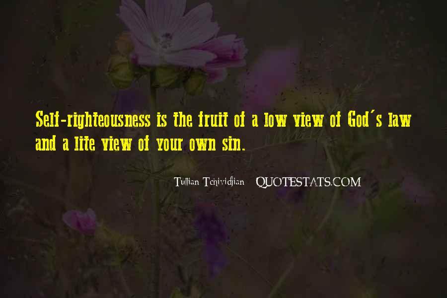 Tullian Tchividjian Quotes #321432