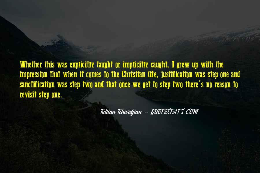 Tullian Tchividjian Quotes #714556