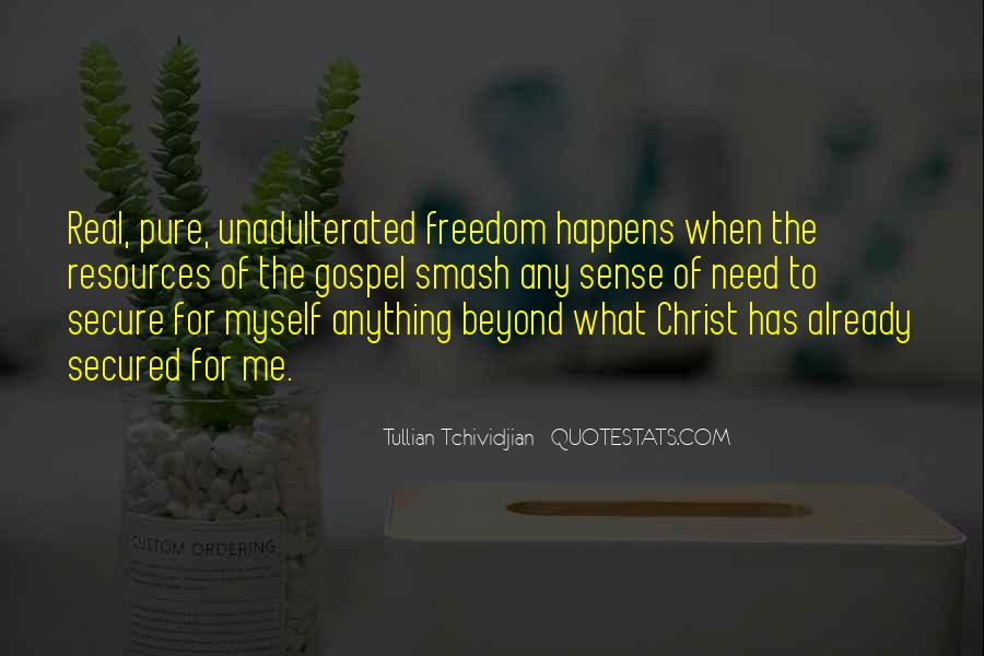 Tullian Tchividjian Quotes #911724