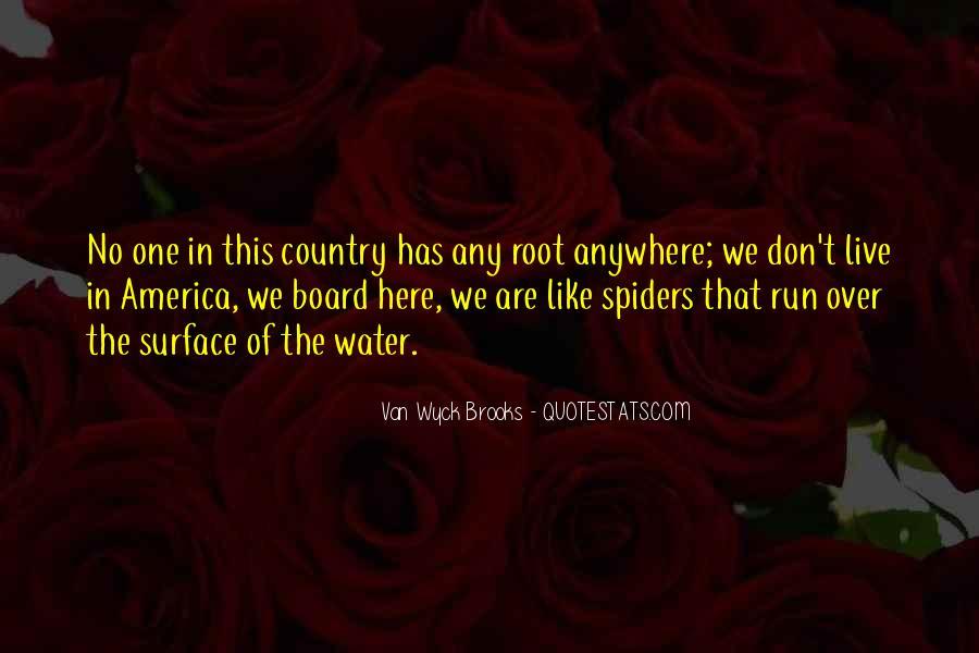 Van Wyck Brooks Quotes #1551782