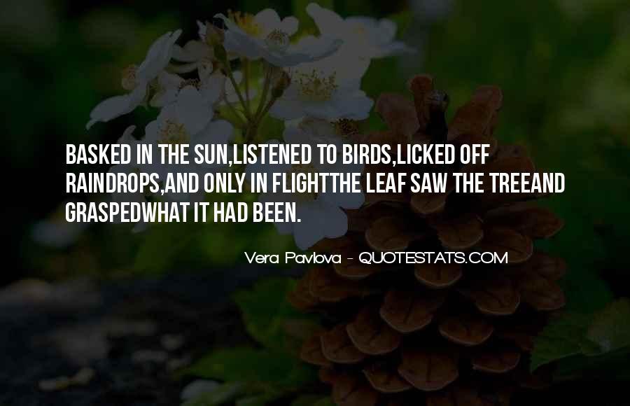 Vera Pavlova Quotes #1409569