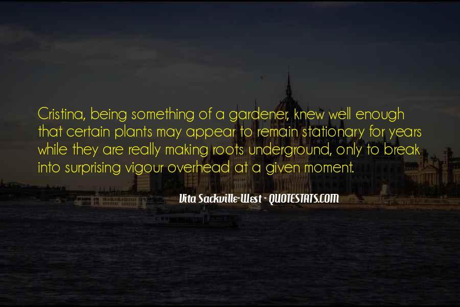 Vita Sackville-West Quotes #812705