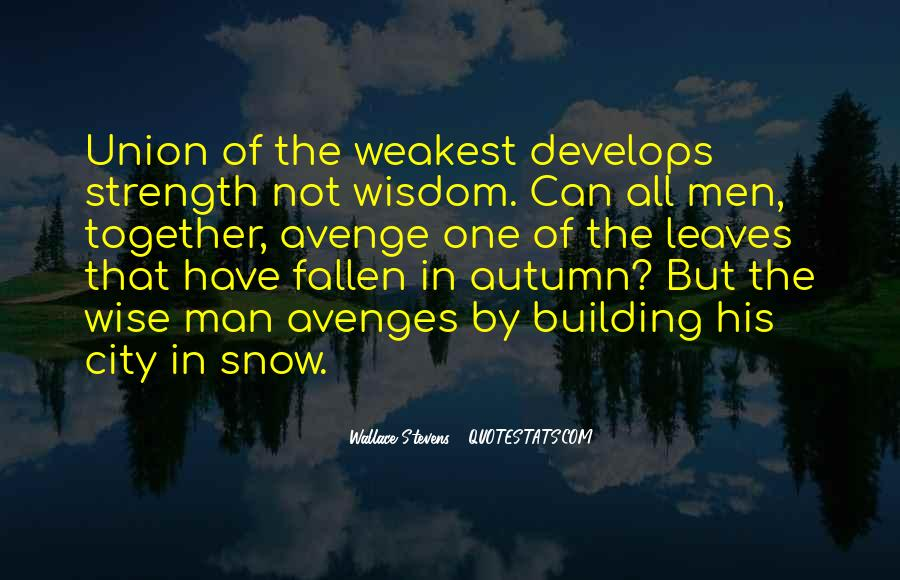 Wallace Stevens Quotes #910841