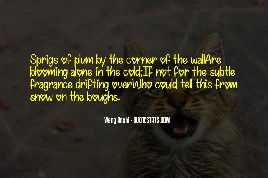 Wang Anshi Quotes #974866
