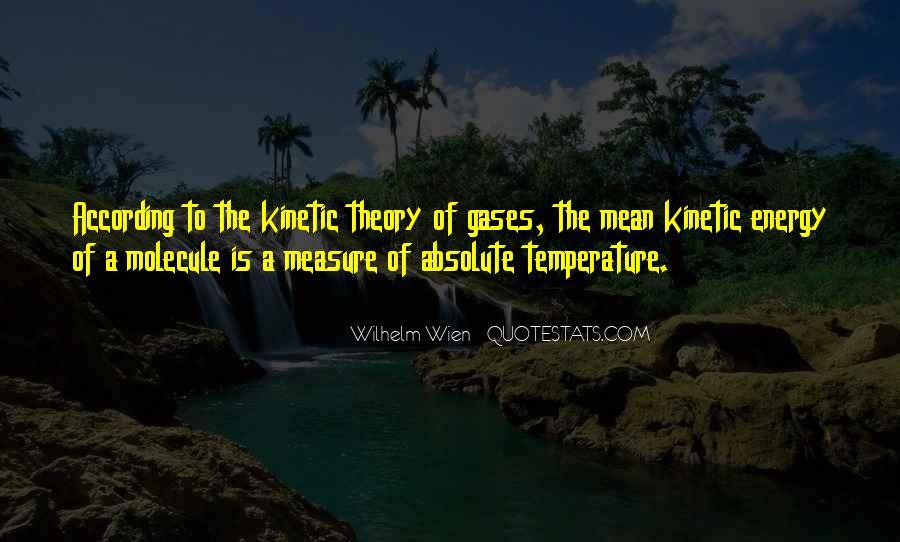 Wilhelm Wien Quotes #198253