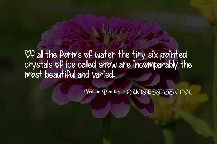 Wilson Bentley Quotes #511767