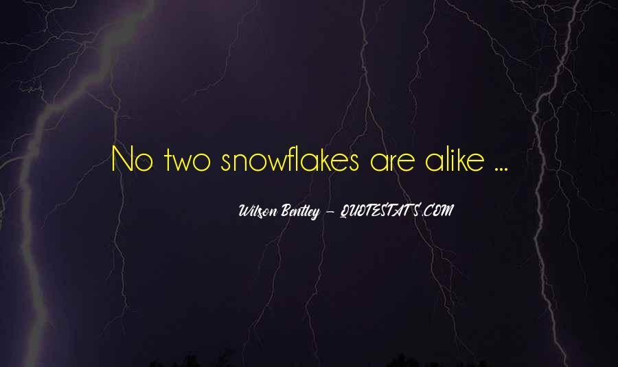 Wilson Bentley Quotes #81710