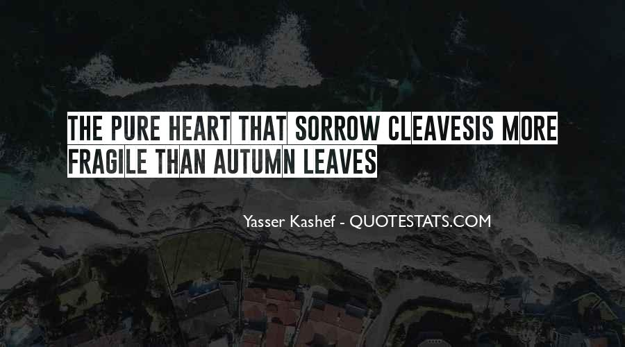 Yasser Kashef Quotes #448736