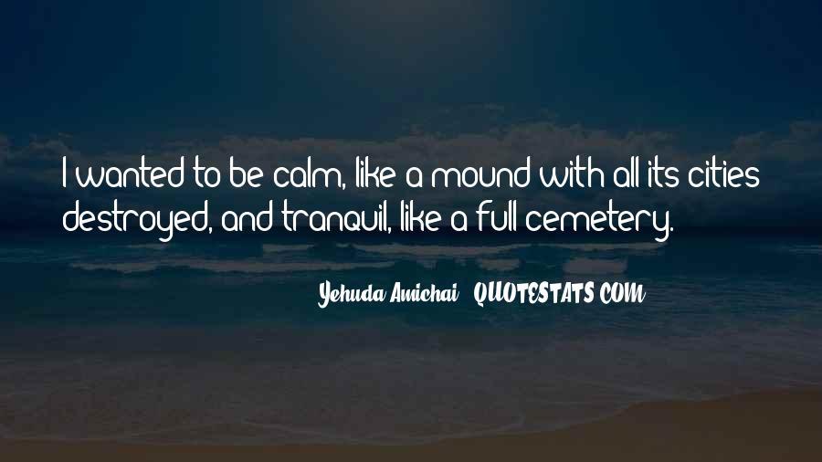 Yehuda Amichai Quotes #1109791