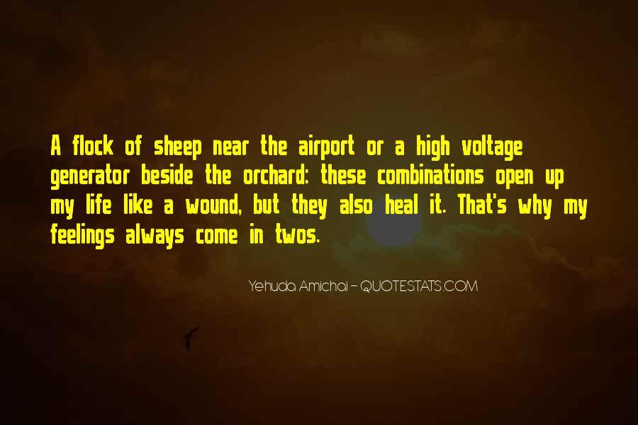 Yehuda Amichai Quotes #1688394
