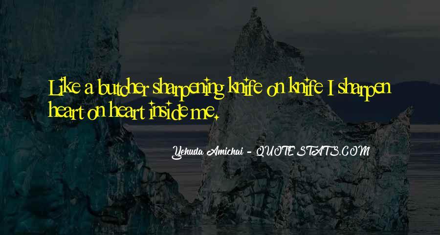 Yehuda Amichai Quotes #911018