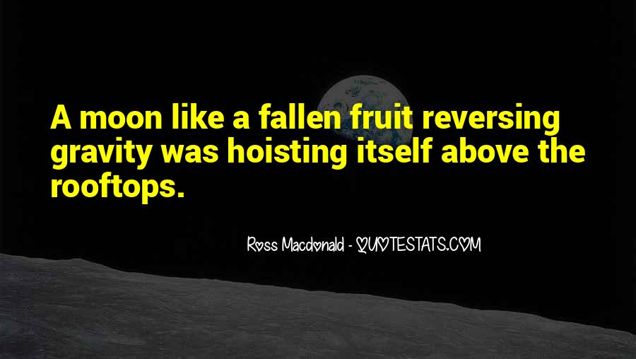 Hoisting Quotes #1229539