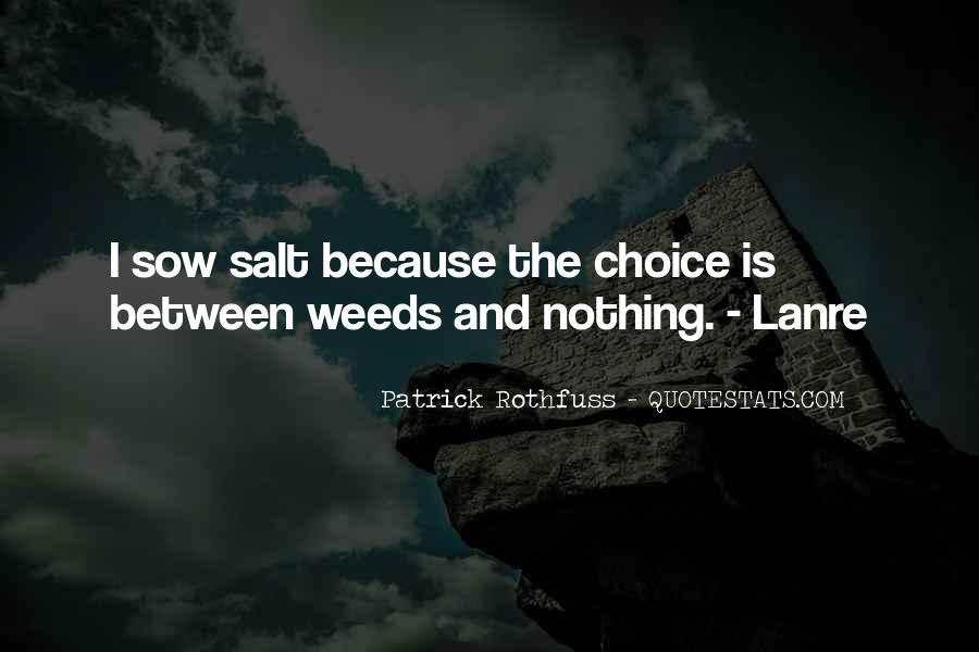 Lanre's Quotes #1379916