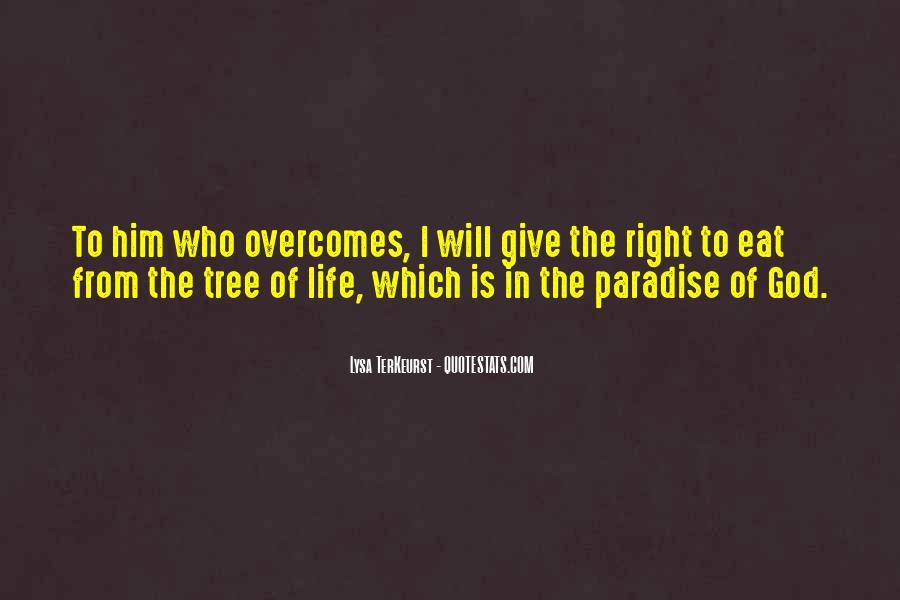 Lysa Quotes #12154