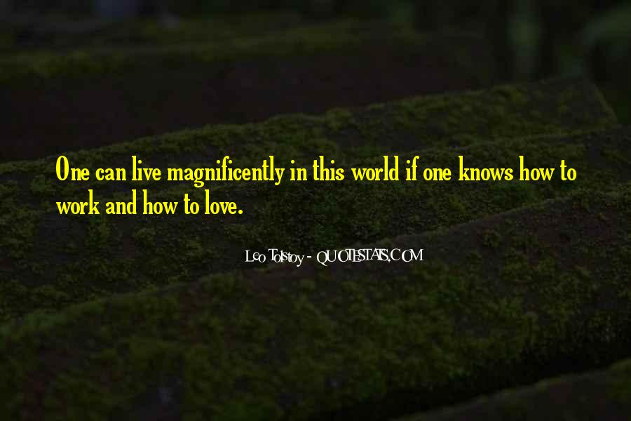 Magnificently Quotes #1851509