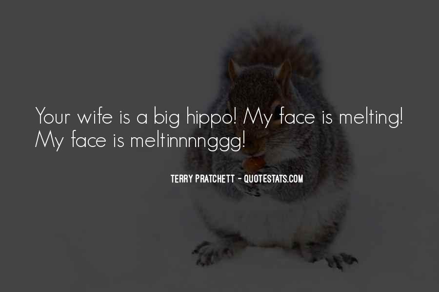 Meltinnnnggg Quotes #554192