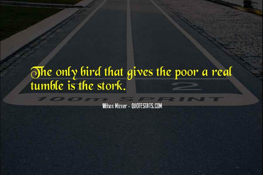 Mizner's Quotes #517818