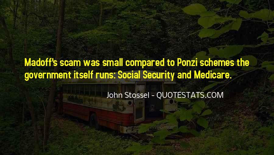 Quotes About Ponzi Schemes #1094473