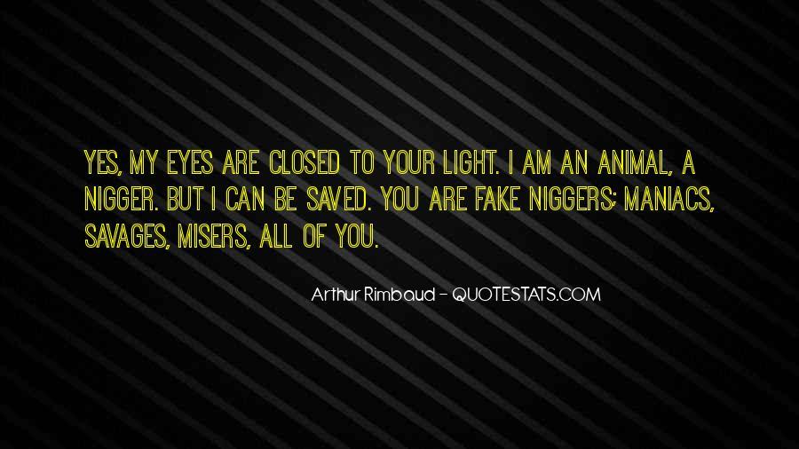 Niggers Quotes #1299988