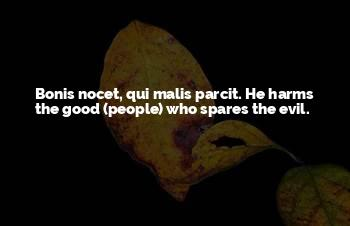 Nocet Quotes
