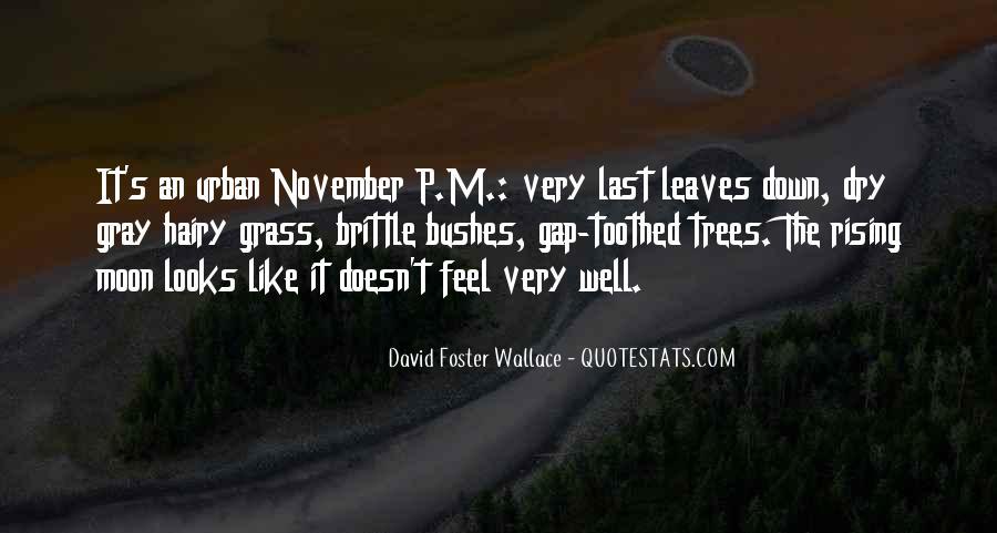 November's Quotes #1038464