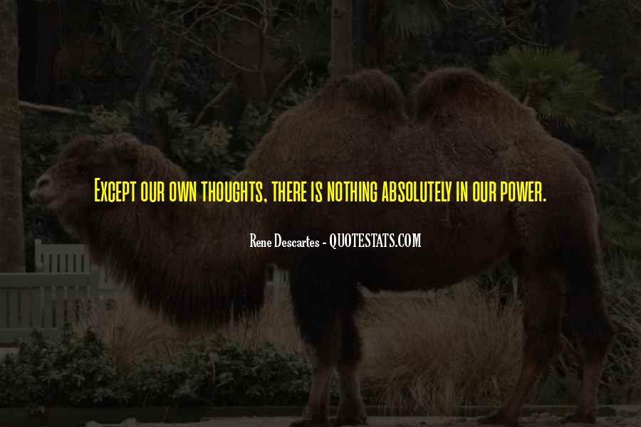 Orpheum Quotes #1665745