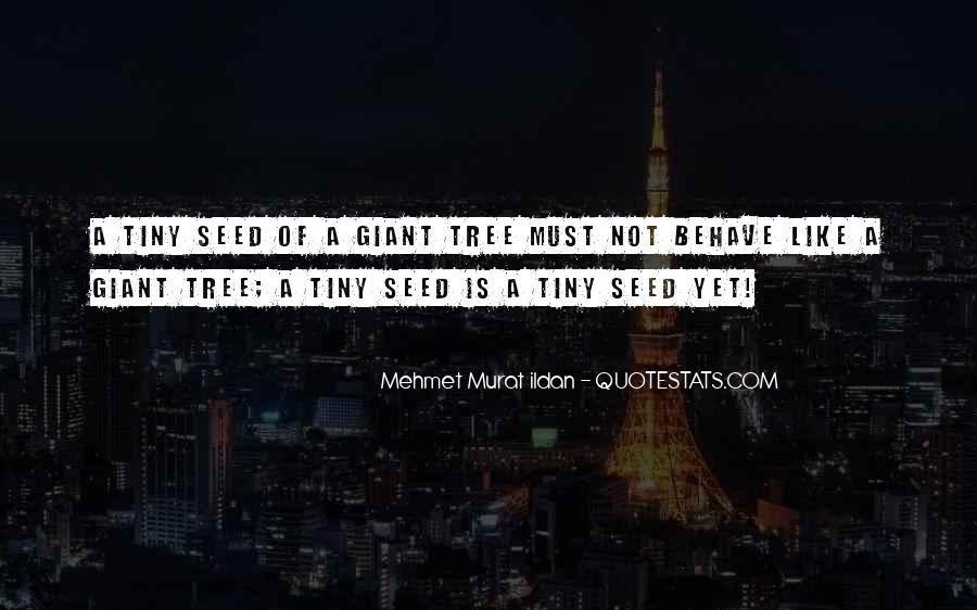 Ptiy Quotes #432369