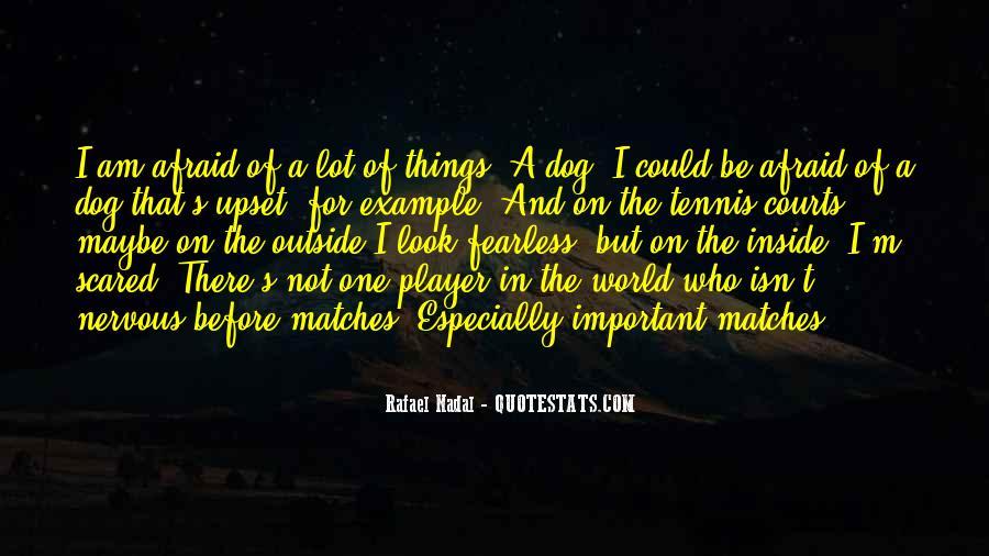 Rafael's Quotes #219857