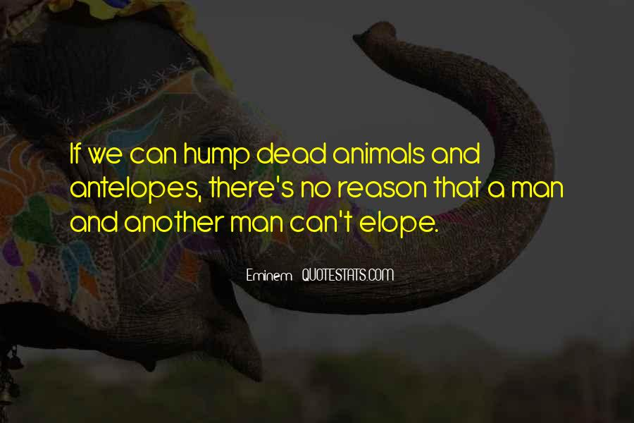 Quotes About Man And Animals #123000