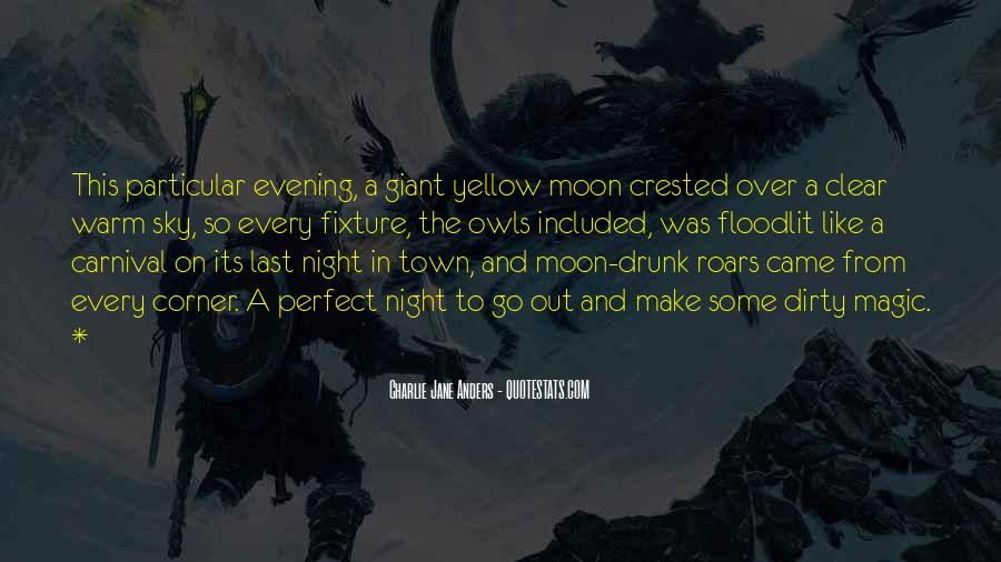 Quotes About The Night Sky #148229