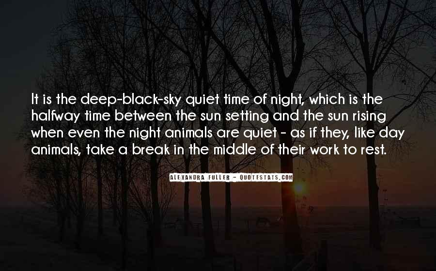 Quotes About The Night Sky #166366