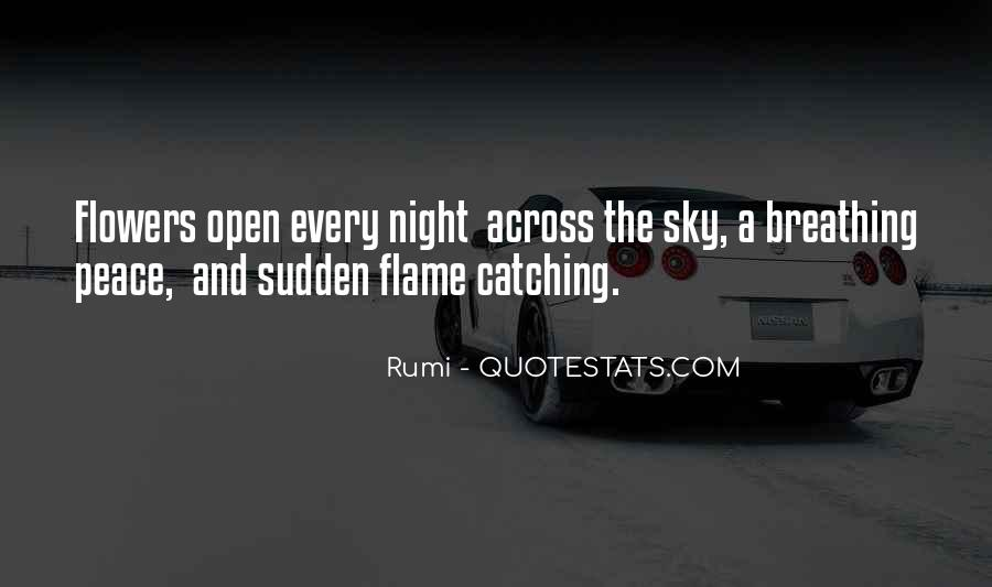 Quotes About The Night Sky #314632