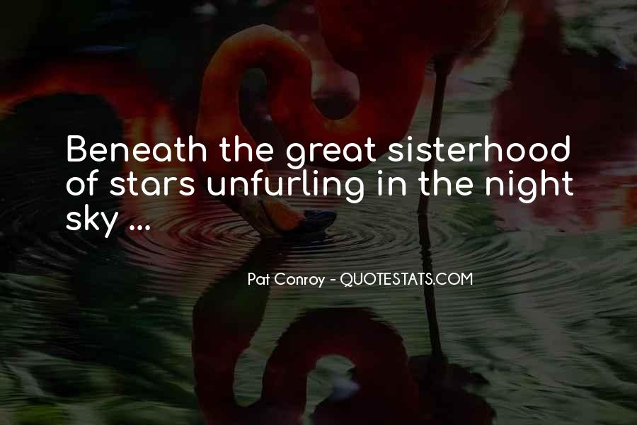 Quotes About The Night Sky #55742