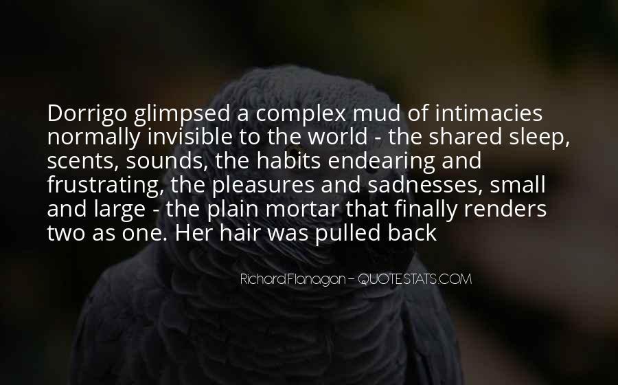 Sadnesses Quotes #68454