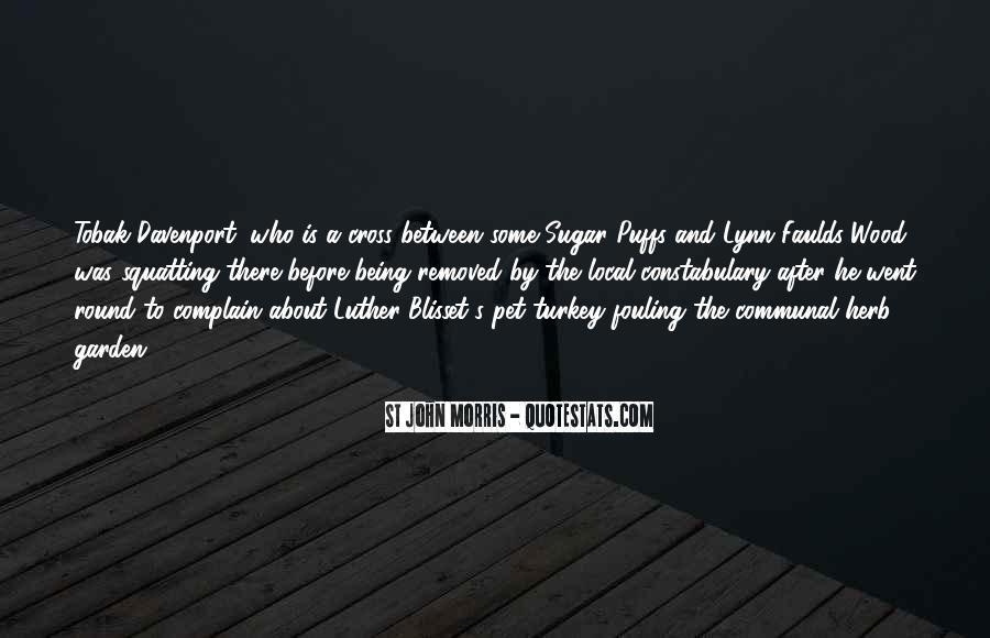 Satire's Quotes #588155