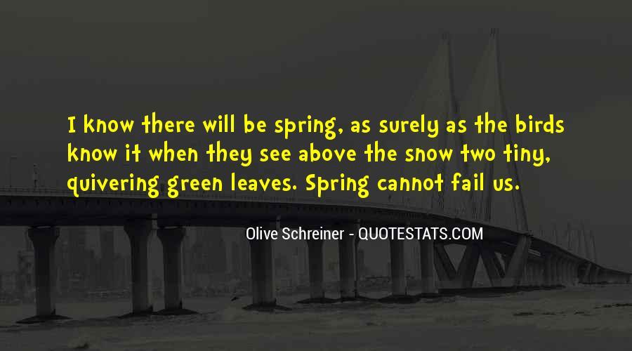 Schreiner Quotes #1321072