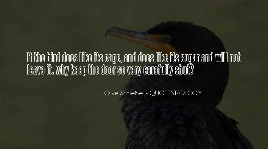 Schreiner Quotes #46545