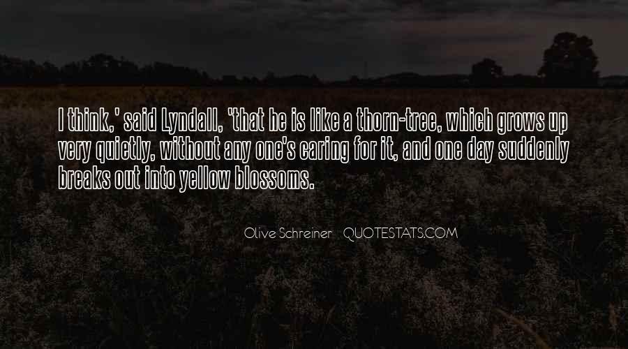Schreiner Quotes #621001