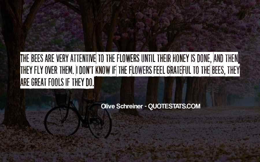 Schreiner Quotes #701109