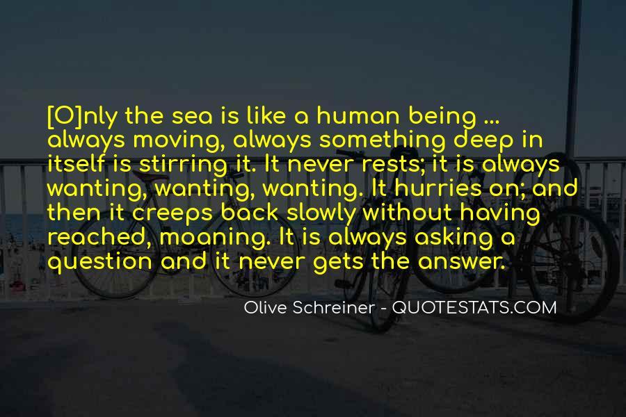 Schreiner Quotes #865454