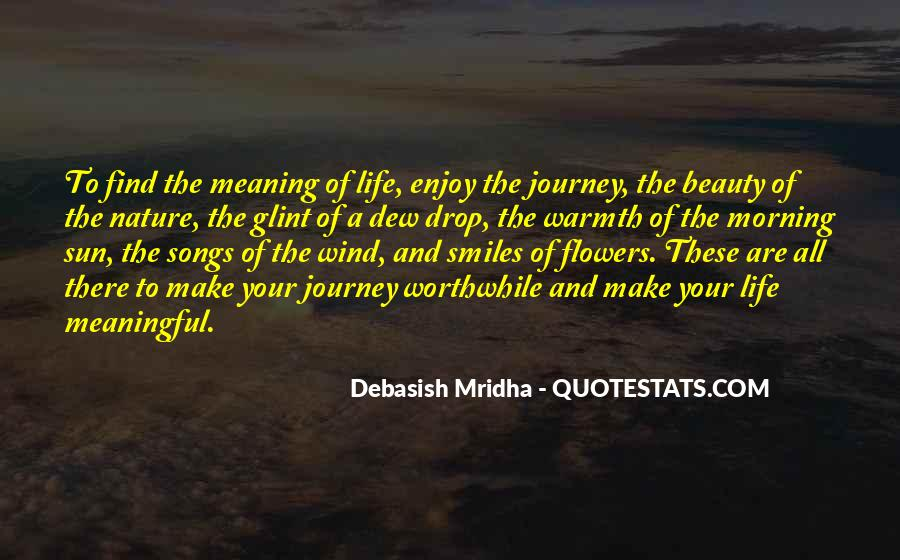 Quotes About Meaningful Life #108136