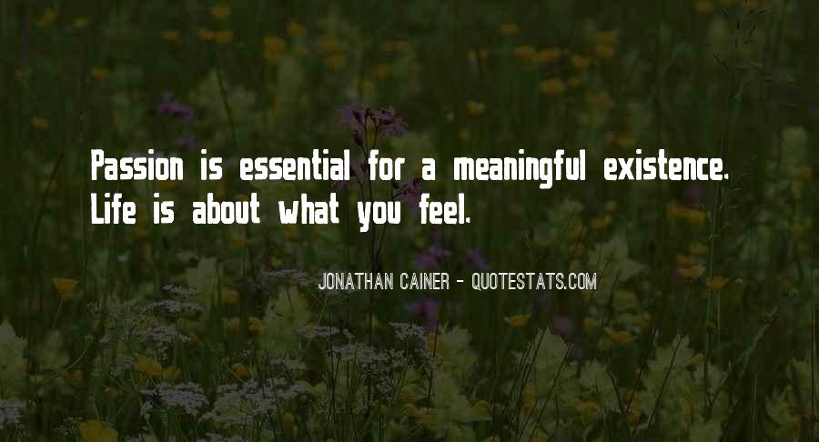 Quotes About Meaningful Life #148041