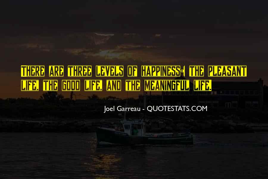 Quotes About Meaningful Life #22708