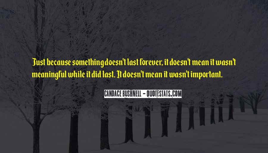 Quotes About Meaningful Life #228968
