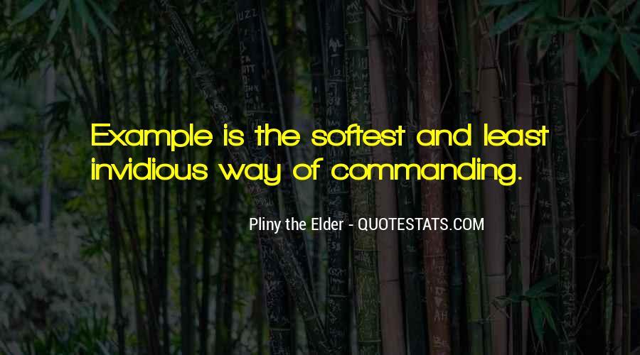 Softest Quotes #520088