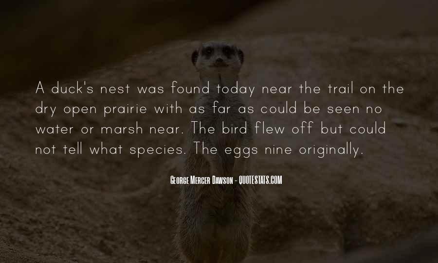 Species's Quotes #113375