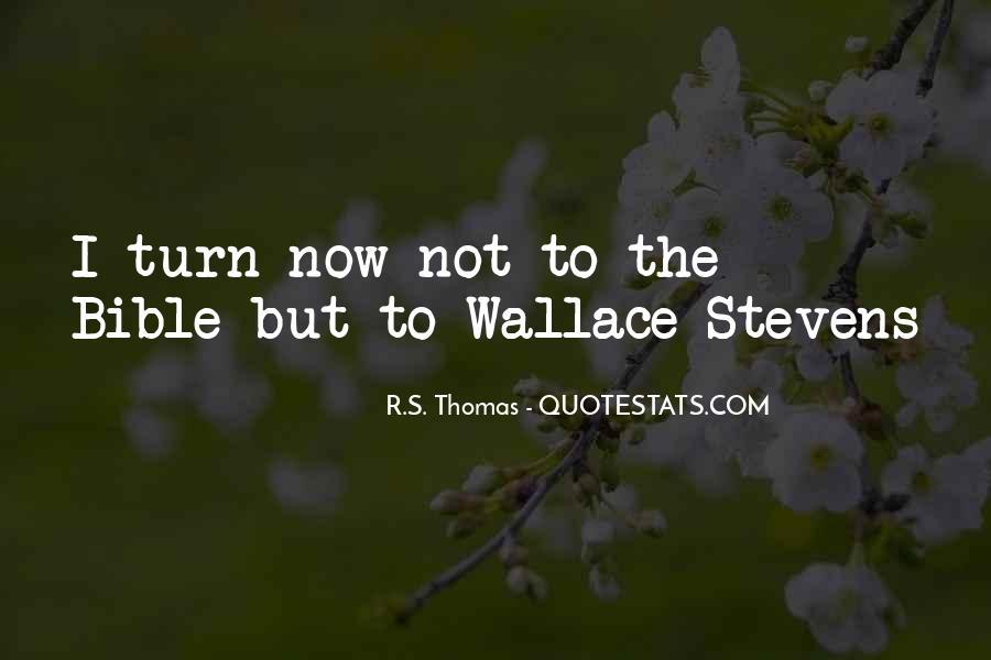 Stevens's Quotes #265890