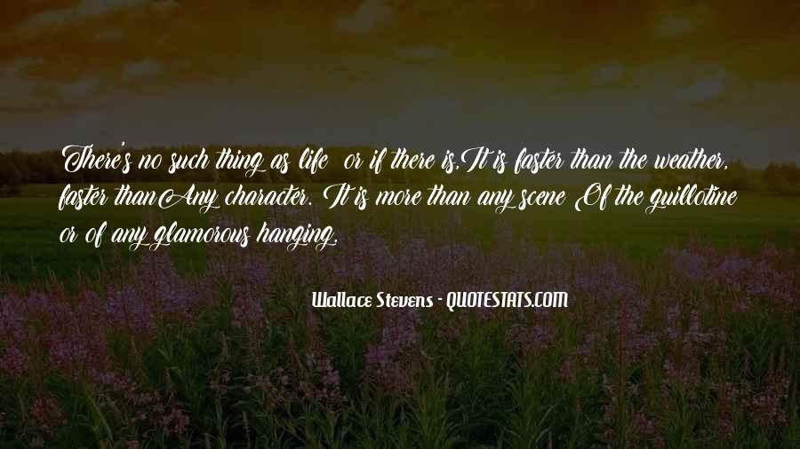 Stevens's Quotes #729628
